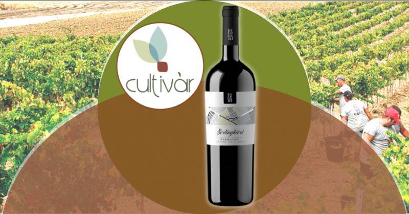 ENOTECA CULTIVAR - Offerta vendita vino rosso Perricone Biologico